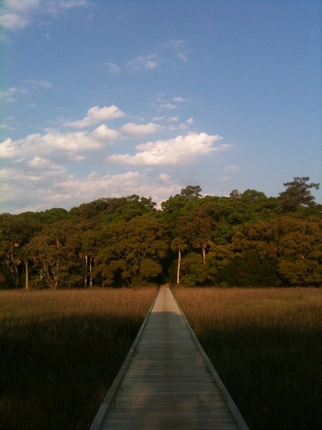 State Park boardwalk on Edisto Island
